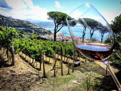 Thumbnail Discover Vietri sul Mare with Le Vigne di Raito