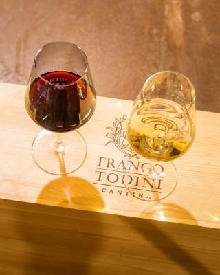 Thumbnail Wine tasting experience at Todini Winery