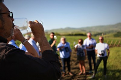 Thumbnail Tour and tasting of natural wines immersed in the Sicilian countryside