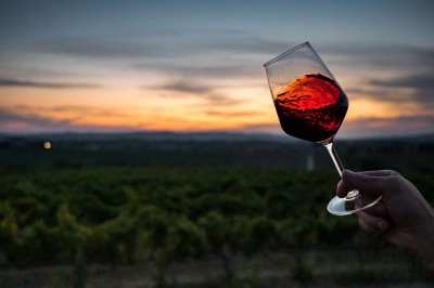 Thumbnail Wine experience on the sweet Tuscan hills