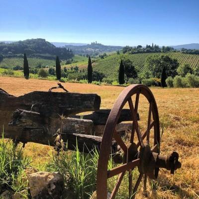 Thumbnail Superior tasting and tour at Rampa di Fugnano winery