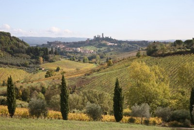 Thumbnail Sensorial wine experience immersed in the territory of San Gimignano