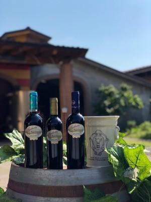 Thumbnail Wine experience presso la cantina Il Dosso