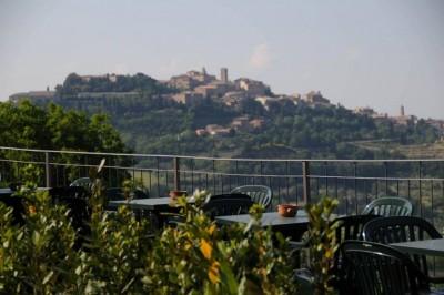 Thumbnail Wine Tasting Experience at Ercolani winery