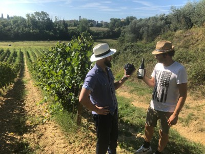 Thumbnail My Wine. Taste & bottle wine in the authentic farm: welcome to Dalle Nostre Mani Winery