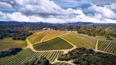 Thumbnail Wine Experience at Capichera Winery
