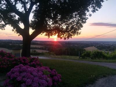 Thumbnail Colli Bolognesi Winetour and tasting at Manaresi Wine estate