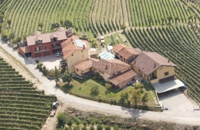 Thumbnail Wine Tour experience in the Langhe of Dogliani