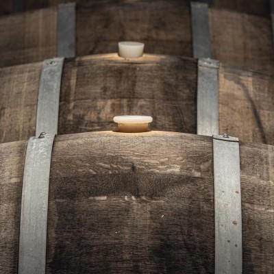 Thumbnail Premium Vermentino Experience at Capichera winery