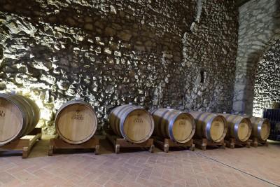 Thumbnail Superior Wine Tasting at Tenute Casoli