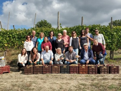 Thumbnail A day with the winemaker at Tenute Casoli