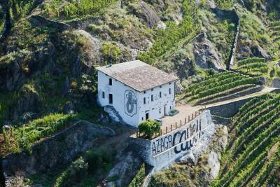 Thumbnail Tasting Valtellina at Caven Camuna winery