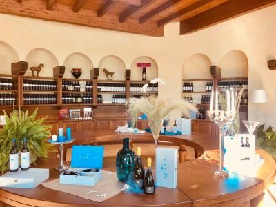 """Thumbnail """"Classic"""" tasting and visit at Tenuta Luisa"""