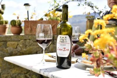 Thumbnail The green wine brunch experience at Fattoria di Poggiopiano