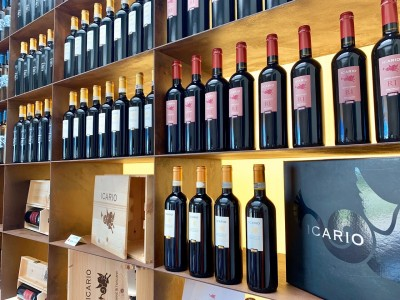 Thumbnail Focus on Montepulciano wines at Icario winery