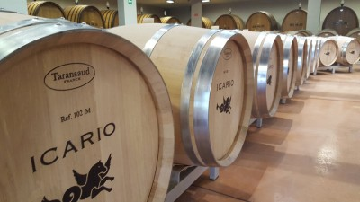 Thumbnail Tour, Tasting and Tuscan appetizers at Icario winery