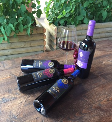 Thumbnail Wild Wine Tasting at Palagetto winery