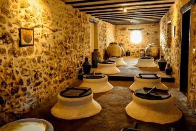 Thumbnail OliveOil Tour: Visita un mulino di Malaga