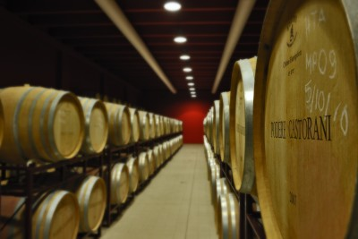 Thumbnail Premium Wine Experience at Poderi Castorani