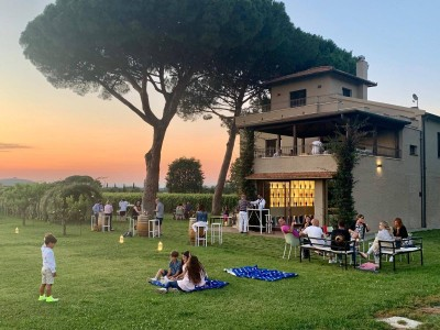 Thumbnail Picnic at the vineyard at Campo alle Comete