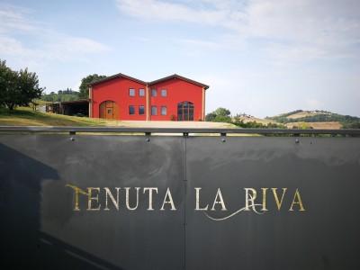Thumbnail Cooking class, tasting and lunch at Tenuta La Riva