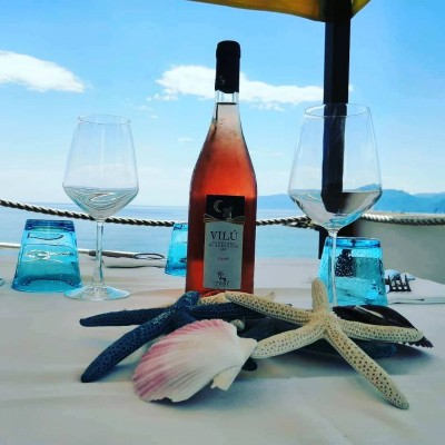 Thumbnail Gallura through its white and red wines at Tani Winery