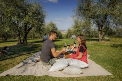 Thumbnail Tuscan picnic experience at Franco Pacenti