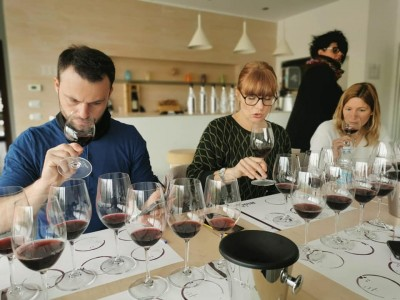 Thumbnail Langhe half day tour experience with Winedering