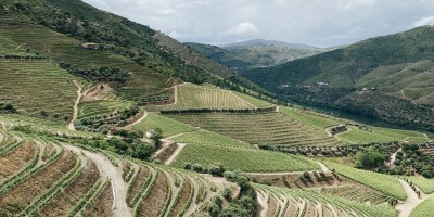 Thumbnail A day at Gricha Estate in the Douro Valley