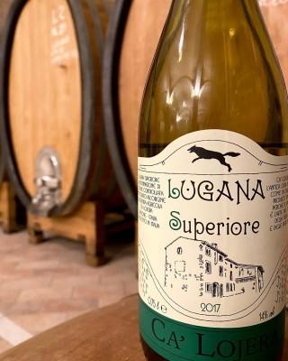 Thumbnail Wine Tour at Cà Lojera winery