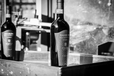 Thumbnail Wine experience at Coali Winery