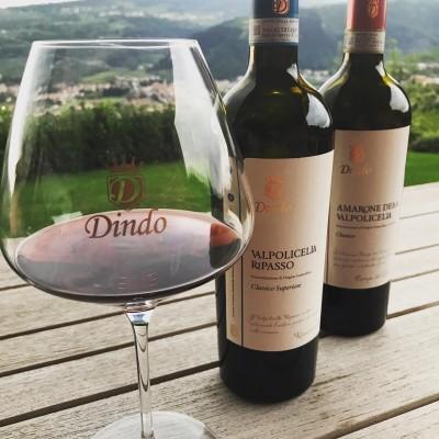 Thumbnail Wine Experience presso la Cantina Dindo
