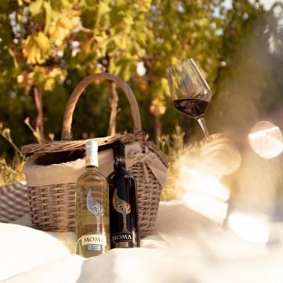 Thumbnail Picnic in the vineyard at Umberto Cesari