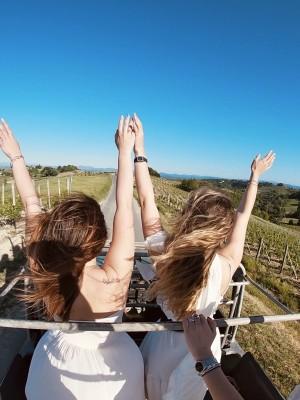 Thumbnail Monferrato picnic experience at Oddone Prati
