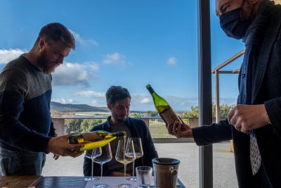 Thumbnail Visit and Tasting Bolgheri at Michele Satta winery