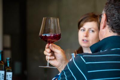 Thumbnail Visit and Tasting Selections at Michele Satta winery
