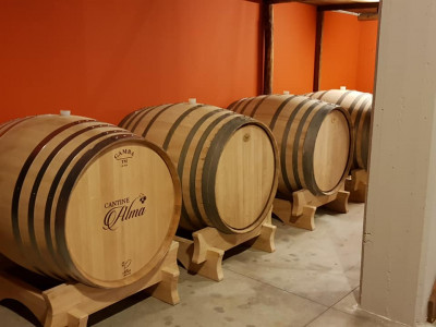 Thumbnail Wine tour and tasting at Cantine Alma