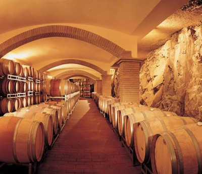 Thumbnail A 360° tasting of Etna wines