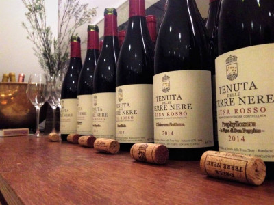 Thumbnail Discovering the beauty of Etna's wines and their longevity