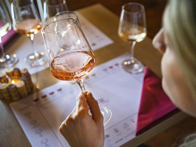 Thumbnail Classic wine tasting experience at Tenuta Artimino