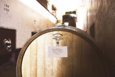 Thumbnail Degustazione Chianti e olio da Fattoria Montereggi