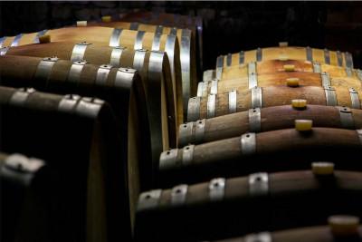 Thumbnail Wine lovers tasting experience at Rocca di Castagnoli