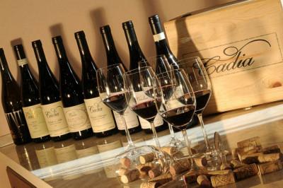 Thumbnail Wine Experience at Cadia winery