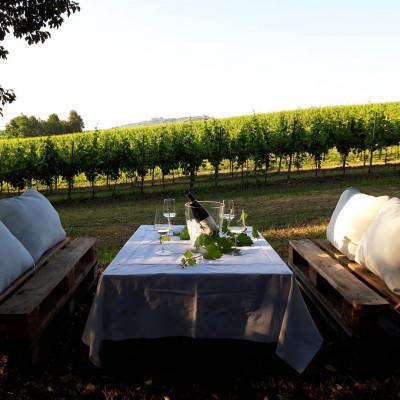 Thumbnail PicNic among hills, vineyards and unspoilt nature
