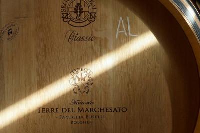 Thumbnail Visit and classic tasting in Bolgheri - Terre del Marchesato