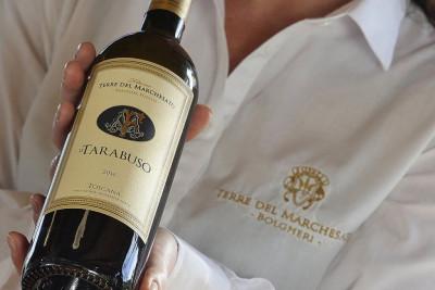 Thumbnail Premium visit and tasting at Terre del Marchesato