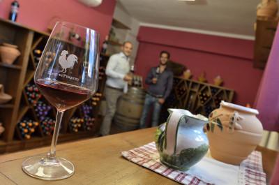 Thumbnail Premium Wine Experience presso Terre di Perseto