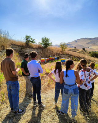 Thumbnail Sicilian Country and Land Art -DOP cheese and BIO wine day tour