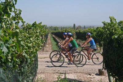 Thumbnail Bike&Cooking from Gallipoli