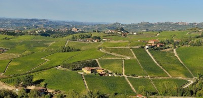 Thumbnail Costa di Bussia Wine Tour